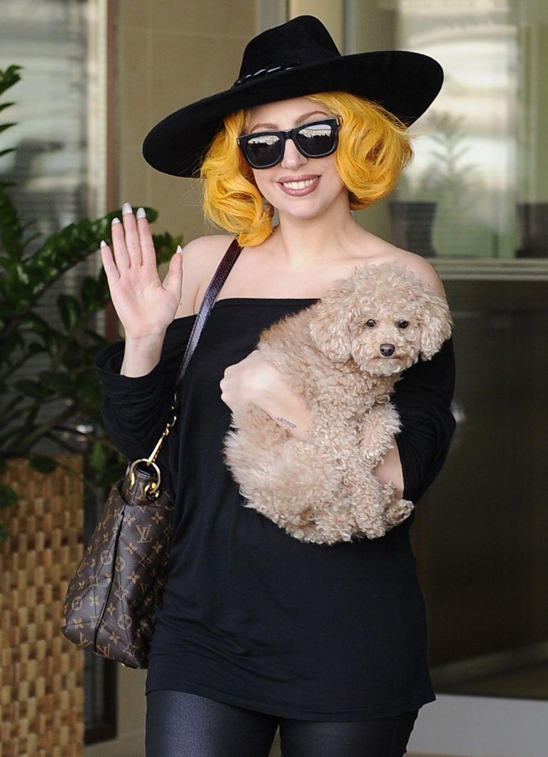 H Lady Gaga θα εκδώσει τα ημερολόγιά της | tovima.gr