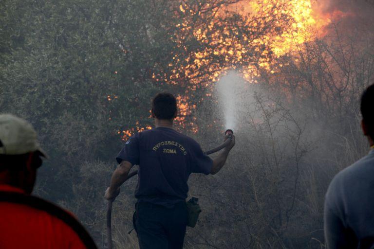 ΣΥΡΙΖΑ: Επίκαιρη ερώτηση προς Δένδια για τις ανεξέλεγκτες πυρκαγιές | tovima.gr