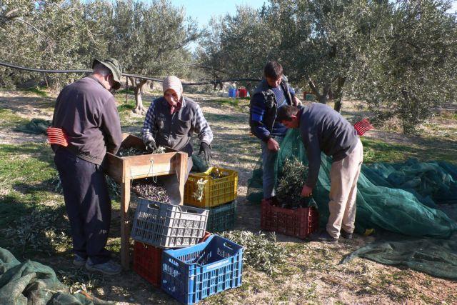 Επιστροφή στα χωράφια που πληγώναμε   tovima.gr