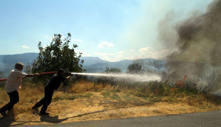 Υπό έλεγχο οι πυρκαγιές σε Δήλεσι Βοιωτίας και Κρυονέρι Αττικής | tovima.gr