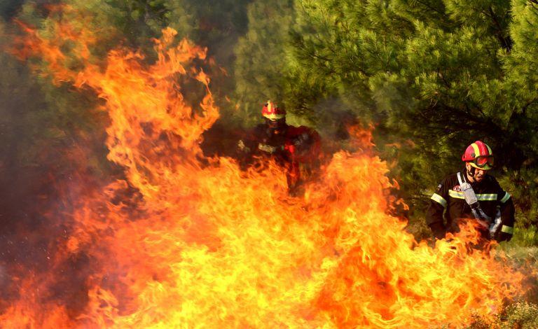 Υπό έλεγχο η πυρκαγιά στην Φθιώτιδα – Πύρινα μέτωπα σε Μεσσηνία και Σέρρες | tovima.gr