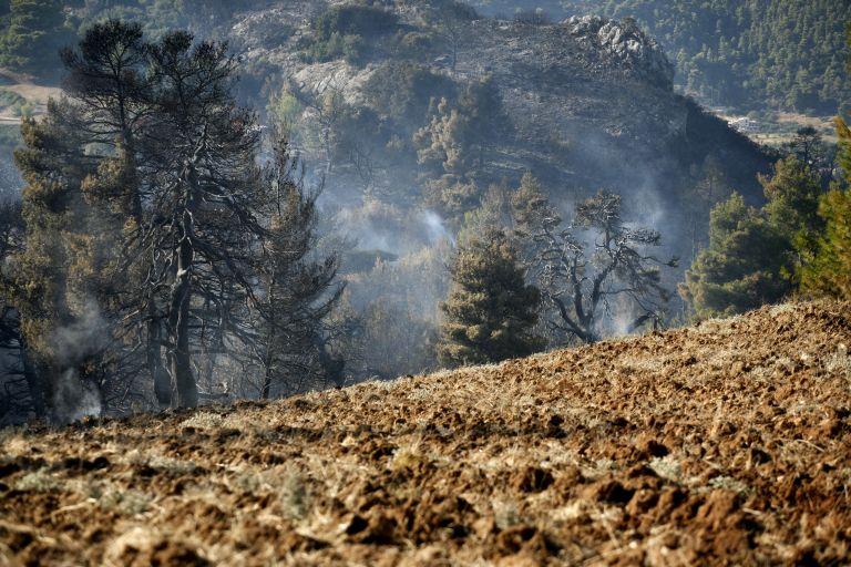 Τρία πύρινα μέτωπα σε Φλώρινα και Γρεβενά | tovima.gr