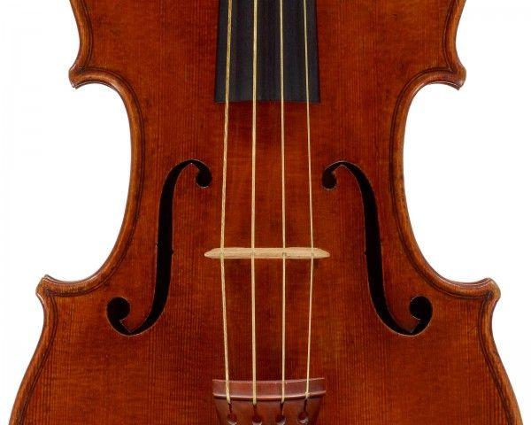«Μυκοξύλο» κάνει τα απλά βιολιά Στραντιβάριους | tovima.gr