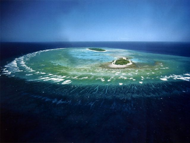 Πεθαίνει ο Μεγάλος Κοραλλιογενής Υφαλος | tovima.gr