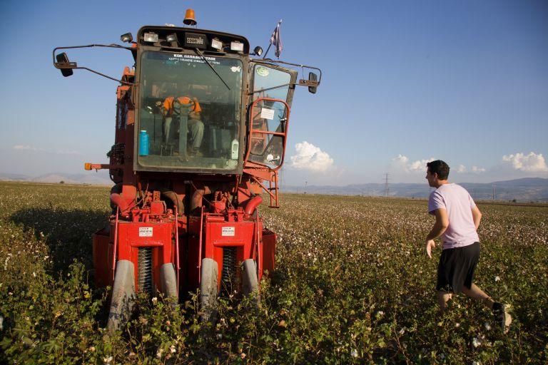 Αρχίζει η καταβολή επιδοτήσεων σε 670.000 αγρότες   tovima.gr