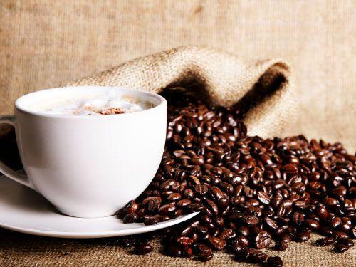 Το κλίμα απειλεί τον καφέ! | tovima.gr