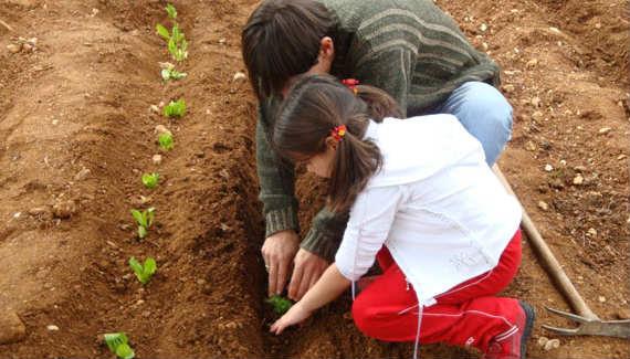 Λαχανόκηποι και βοτανόκηποι στα σχολεία | tovima.gr