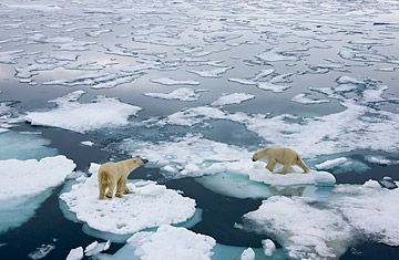 Σχέδιο «Παγώστε ξανά την Αρκτική» ! | tovima.gr