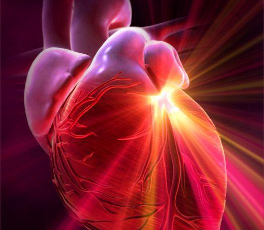 «Βιολογικός» βηματοδότης ρυθμίζει τον καρδιακό παλμό | tovima.gr