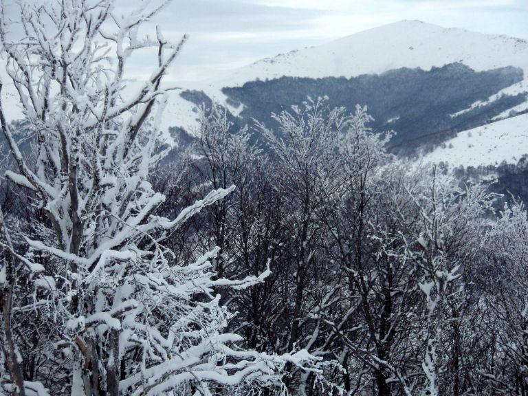 Στα «λευκά» το Παναχαϊκό μετά από ολονύχτια χιονόπτωση [Βίντεο]   tovima.gr