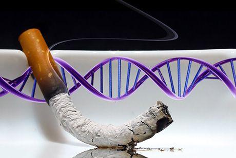 Βλάβη στους «διακόπτες» του DNA λόγω καπνίσματος | tovima.gr