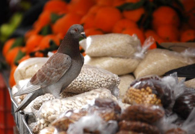 Greeks prefer rice, potatoes and legumes | tovima.gr