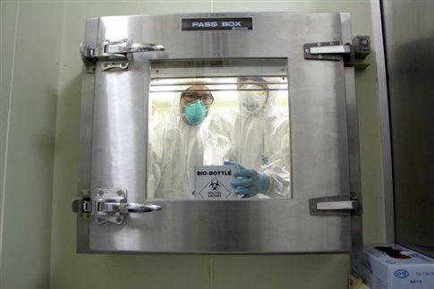 Η7Ν9:Από τα πιο θανατηφόρα στελέχη γρίπης των πτηνών | tovima.gr