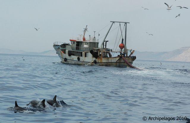 Σήμα κινδύνου για ψάρια και ψαράδες του Αιγαίου   tovima.gr
