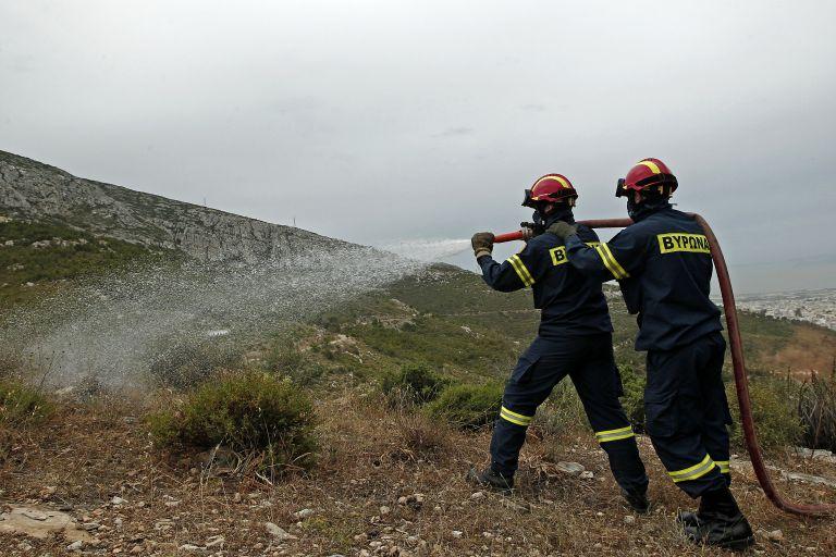 ΣτΕ: Είπε «ναι» στην πρόσληψη 1.578 εποχικών πυροσβεστών | tovima.gr