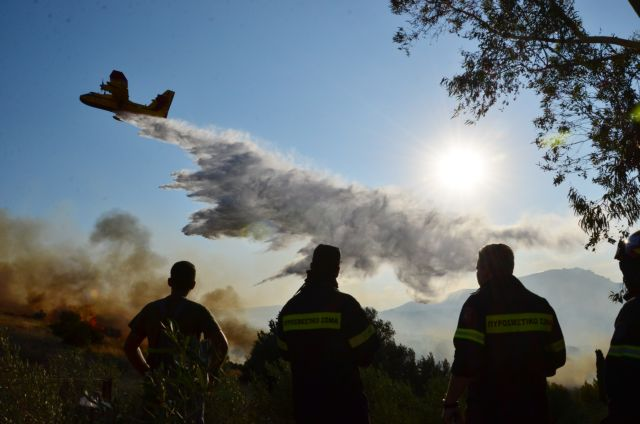 Fire in Argos under control | tovima.gr