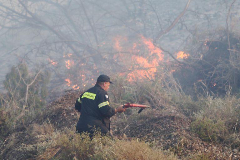 Στις φλόγες δασική έκταση στο Διδυμότειχο | tovima.gr