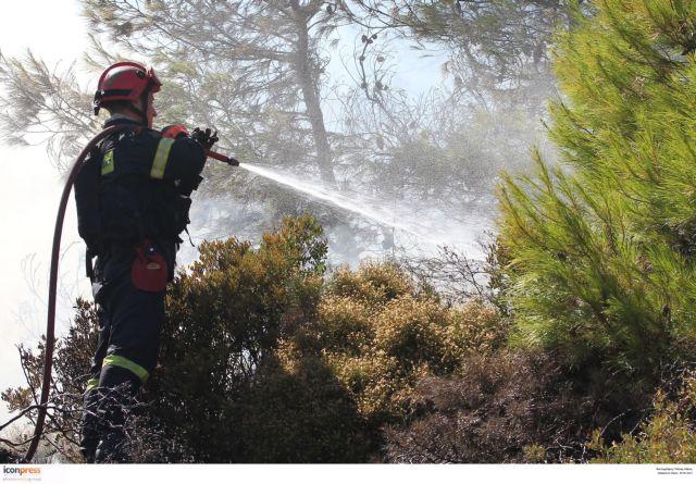 Ενωση Αξιωματικών ΠΣ: Σημαντικές ελλείψεις και άλυτα προβλήματα   tovima.gr