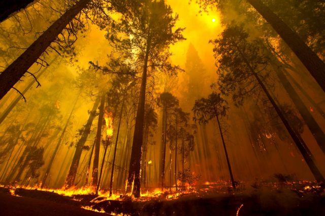 Γιατί καίγεται ξανά η Καλιφόρνια; | tovima.gr