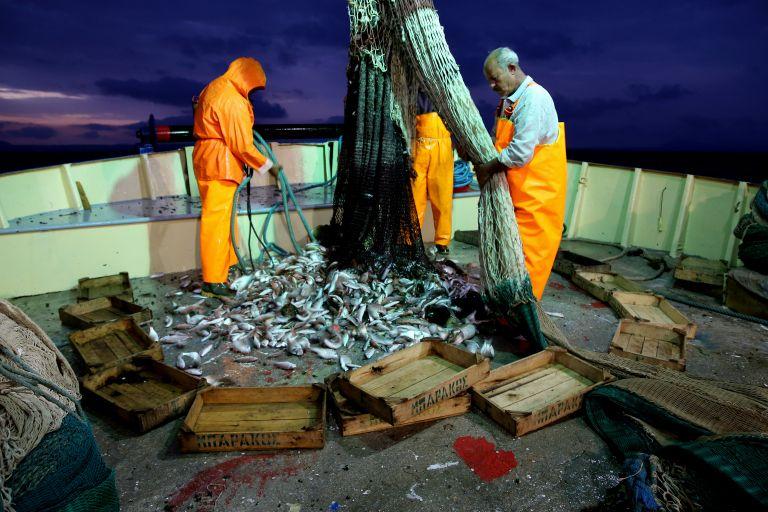 36.000 τόνους ψαρικών από 40 χώρες εισάγει η Ελλάδα   tovima.gr