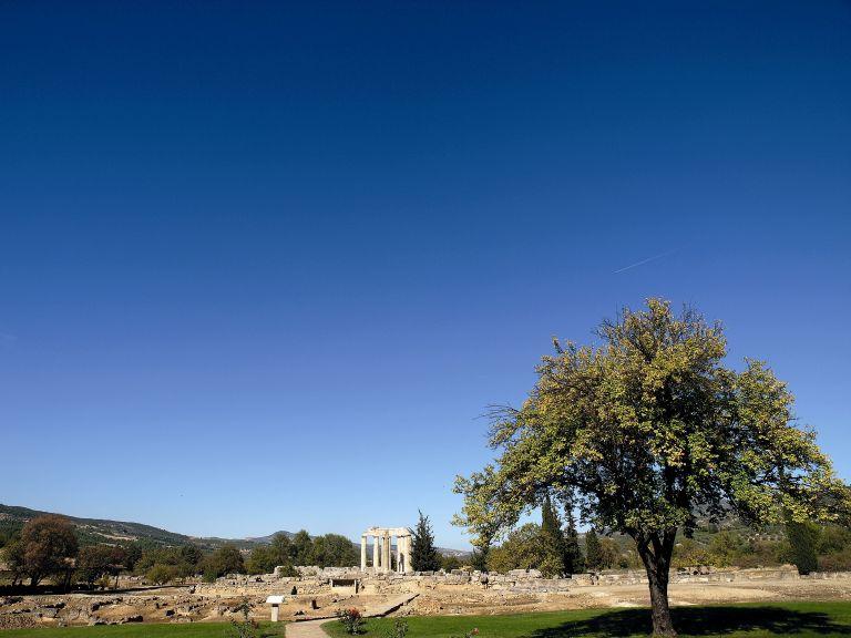 Οι θησαυροί της Νεμέας | tovima.gr