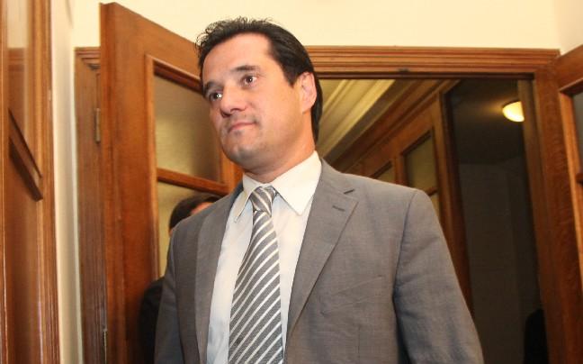 Αδ. Γεωργιάδης: «Δεν κατεβαίνω υποψήφιος για να γίνω αντιπρόεδρος του κ. Τζιτζικώστα» | tovima.gr
