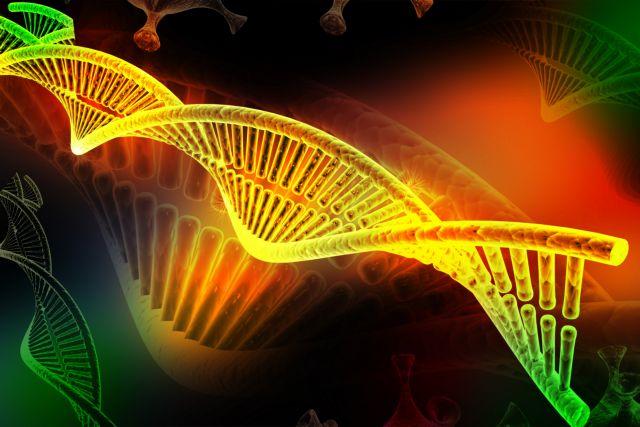 Πόσα μυστικά κρύβει ακόμη το DNA; | tovima.gr