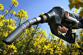 Τρία σχέδια νόμου για την ποιότητα των καυσίμων | tovima.gr
