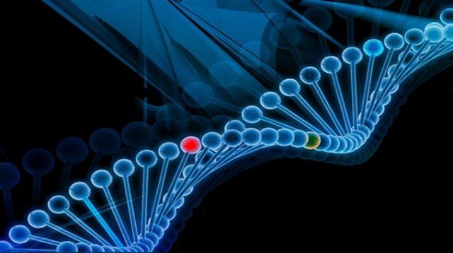Πολλά γονίδια λειτουργούν έως και 48 ώρες μετά θάνατον | tovima.gr