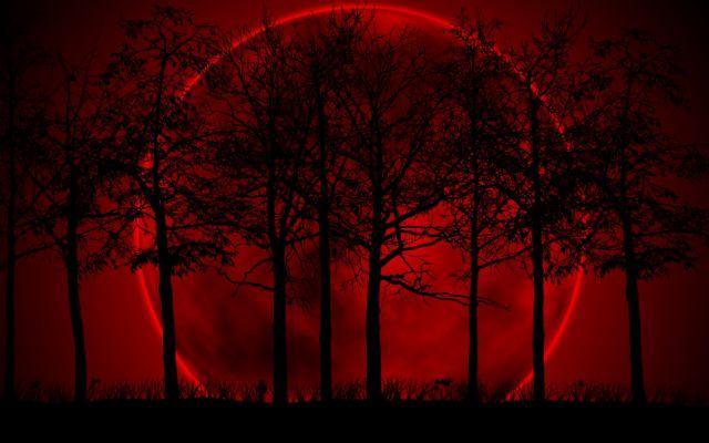 Τα ματωμένα φεγγάρια | tovima.gr