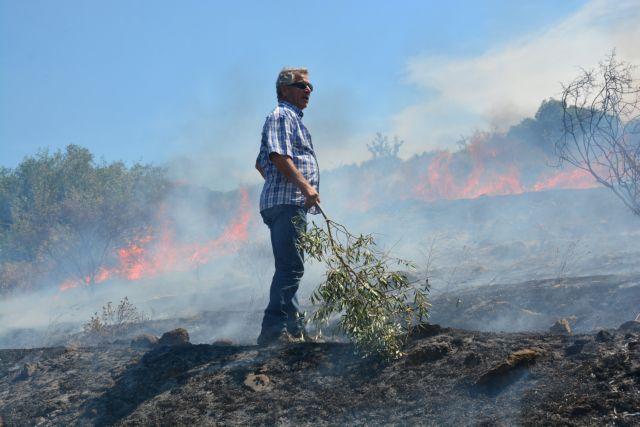 Υψηλός και την Παρασκευή ο κίνδυνος για πυρκαγιές   tovima.gr