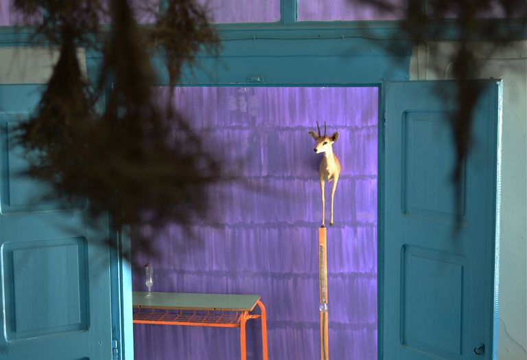 Γλυκό πουλί της τέχνης στην Υδρα | tovima.gr