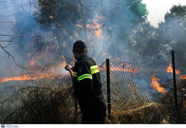 Υπό έλεγχο οι πυρκαγιές σε Κάρυστο και Μαλεσίνα | tovima.gr