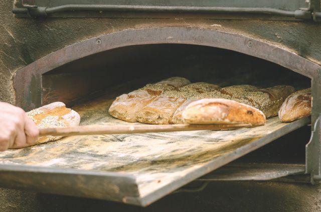 Ποιο είναι το καλύτερο ψωμί σύμφωνα με το Χάρβαρντ | tovima.gr