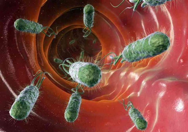 Εντερικά βακτήρια βοηθούν στη διάγνωση του καρκίνου παχέος εντέρου | tovima.gr