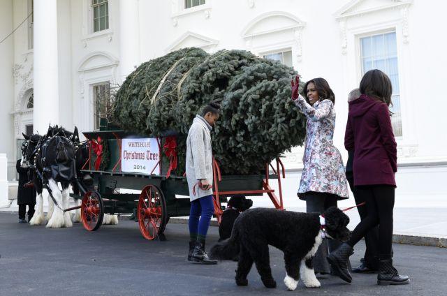 Το χριστουγεννιάτικο δέντρο έφτασε στον Λευκό Οίκο | tovima.gr
