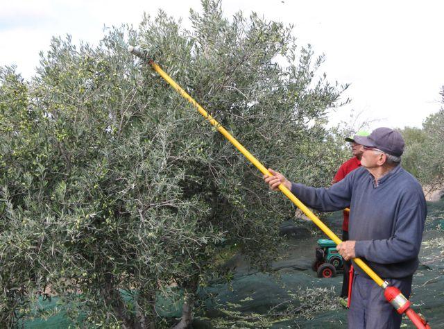 Συντάξεις: Κούρεμα 60% για όσους έχουν αγροτικά εισοδήματα | tovima.gr