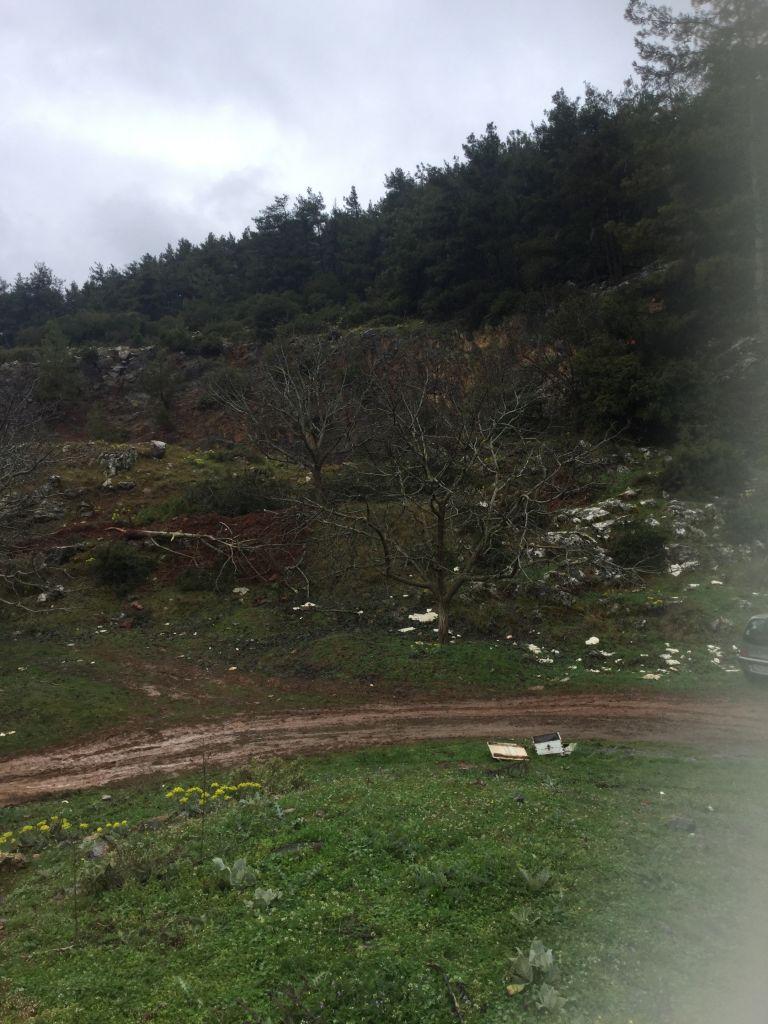 Περιβαλλοντικό έγκλημα στο Μαίναλο | tovima.gr