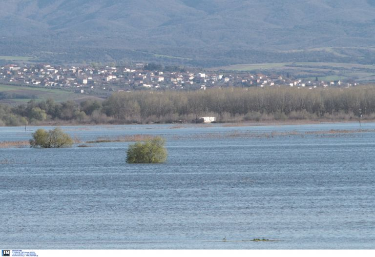 Σέρρες: Χιλιάδες στρέμματα χάνονται κάτω από τα νερά του Στρυμόνα   tovima.gr