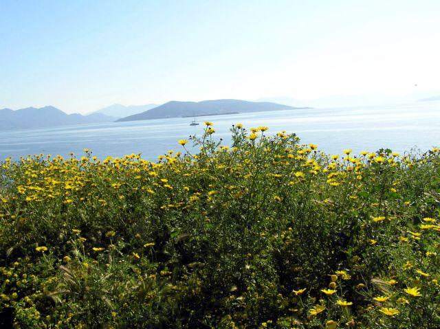 Μία δωρεάν διανυκτέρευση στην Αίγινα | tovima.gr