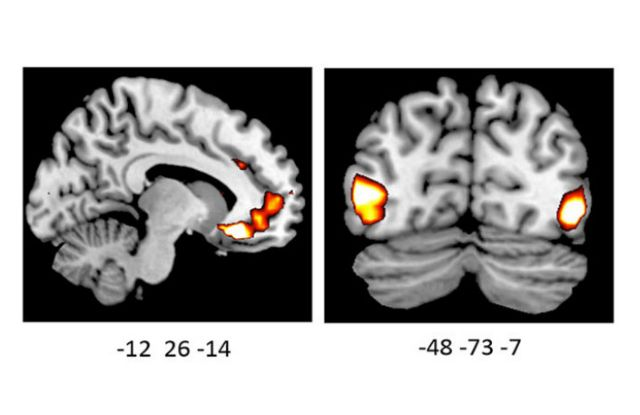 Γονίδιο «διαμορφώνει τις συναισθηματικές αντιδράσεις» | tovima.gr