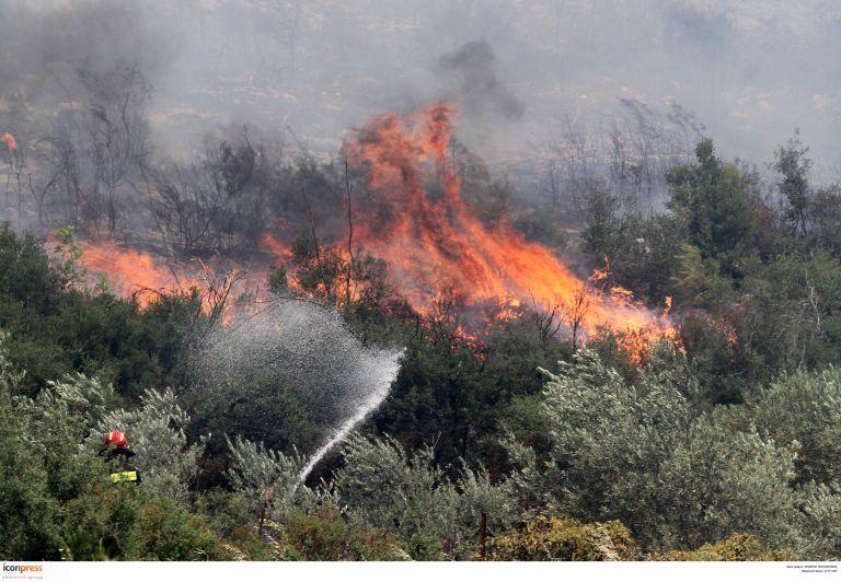 Τρίπολη: Σε εξέλιξη μεγάλη φωτιά στον Πάρνωνα | tovima.gr