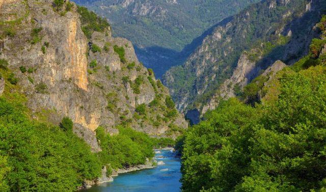 WWF Ελλάς: Νέες «εκπτώσεις» στην προστασία του περιβάλλοντος   tovima.gr