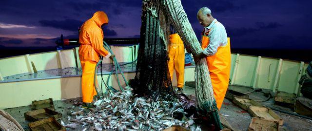 Ευρωκονδύλια €523,4 εκατ. στην αλιεία   tovima.gr
