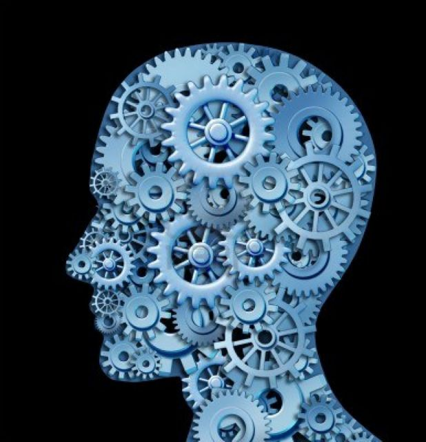 Ο εγκέφαλος οδηγός, πιλότος και… τηλεκοντρόλ! | tovima.gr