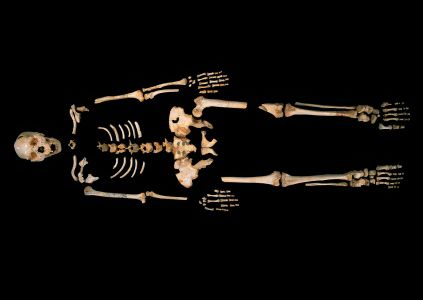Το αρχαιότερο ανθρώπινο DNA ίσως αλλάξει το εξελικτικό μας δέντρο | tovima.gr