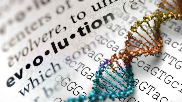 H Εξέλιξη «ακολουθεί το δρόμο της ελάχιστης αντίστασης» | tovima.gr