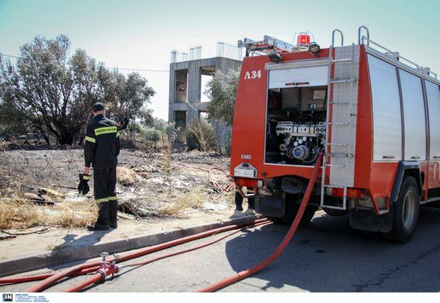 Fire Brigade called out to tackle fire in Agia Kyriaki near Rafina | tovima.gr