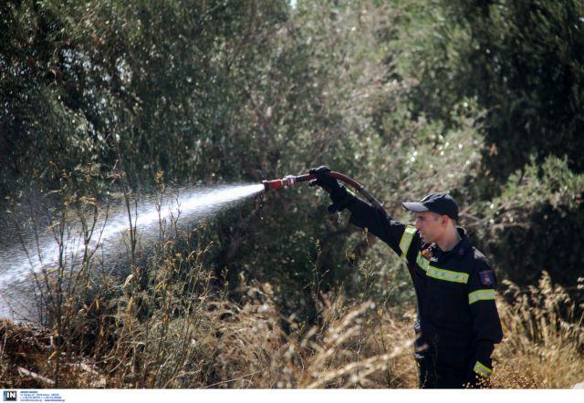 Υπό έλεγχο οι φωτιές σε Ουρανούπολη, Πολύγυρο και Αχαΐα | tovima.gr