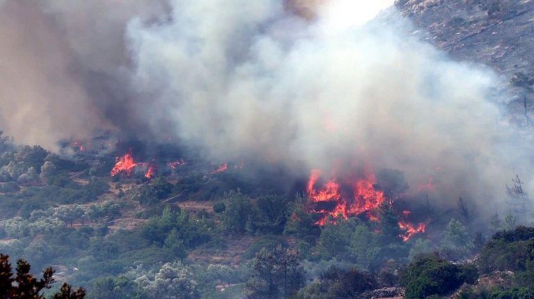 Σε εξέλιξη αγροτοδασική πυρκαγιά στη Φθιώτιδα | tovima.gr